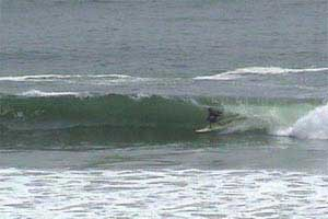 Pulpos Beach - Surfing Beaches in Peru