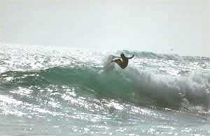 San Bartolo Piers Beach - Surfing Beaches in Peru